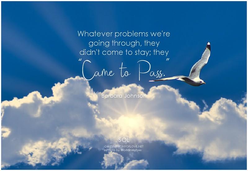 Barbara Johnson Love Quotes and Sayings