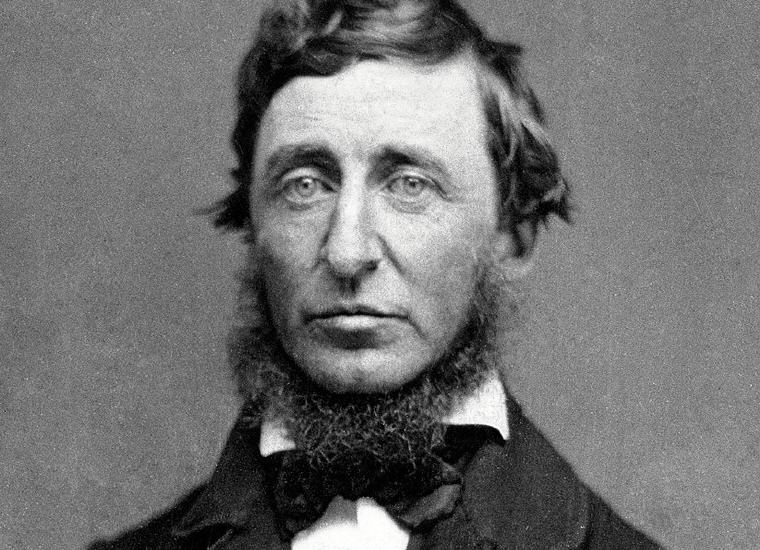 Henry David Thoreau Love Quotes and Sayings, Photo credit: Wikipedia