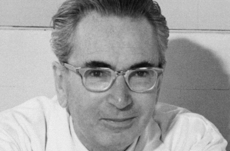 Viktor E Frankl Love Quotes and Sayings